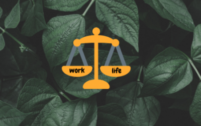 How to Maintain a Healthy Work-Life Balance