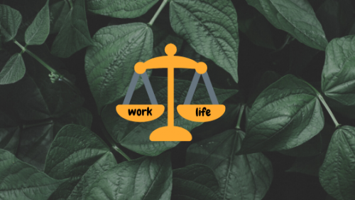 You are currently viewing How to Maintain a Healthy Work-Life Balance
